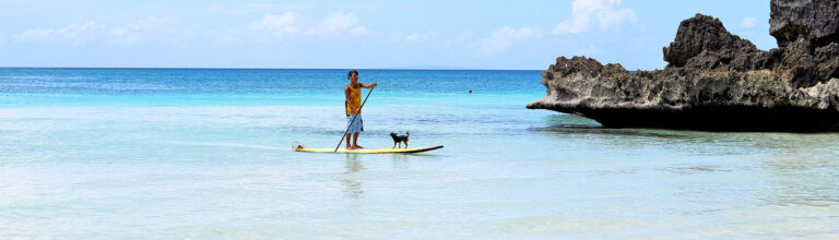 best paddle board accessoires